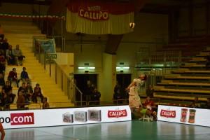 25/10/2017 Tonno Callipo Calabria Vibo Valentia - Kioene Padova (3° giornata SuperLega UnipolSai)